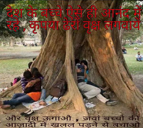 benefit of tree