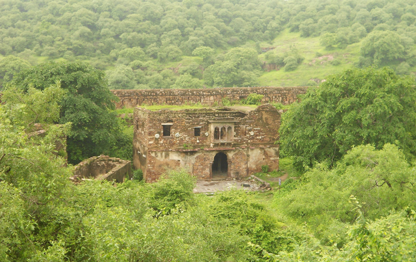Spectacular Ranthambore Fort