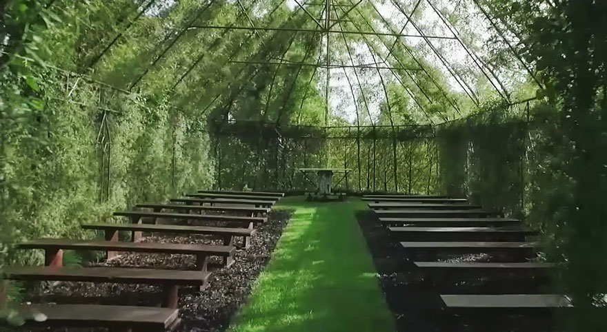 Church Made of Trees in New Zealand