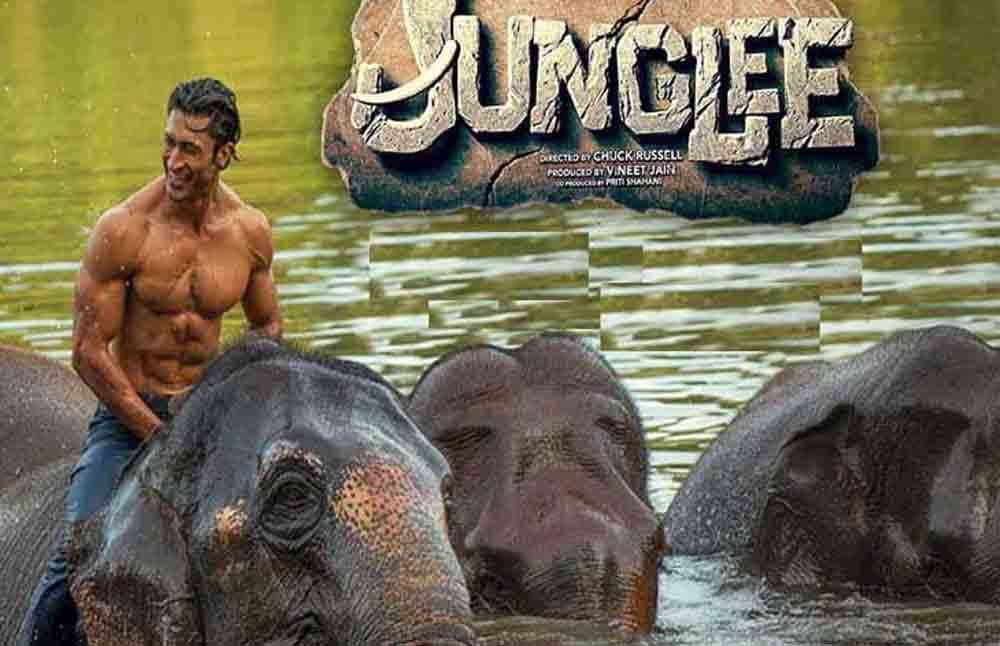 Junglee Has Decent First Week | Movie Crosses 20 Crore at Box Office