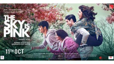 The Sky Is Pink Box Office Collection   Day-wise Net Earnings in India