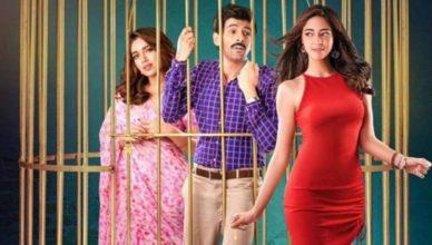 Pati Patni Aur Woh Box Office Collection   Day-wise Net Earnings in India