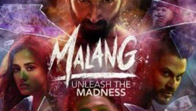 Malang box office collection